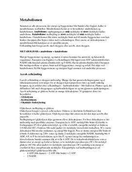 Aerob og anaerob celleånding | Sammendrag