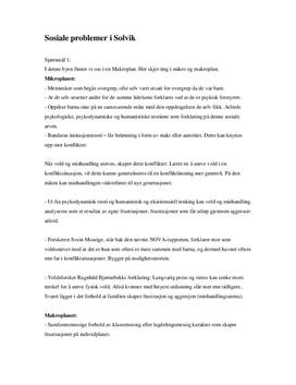 Makroplan og mikroplan (Sosiale problemer i Solvik)
