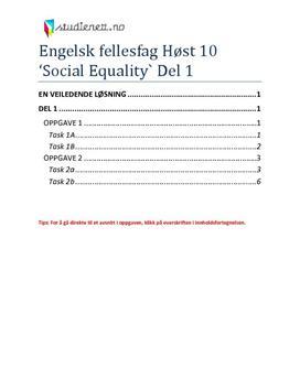 Engelsk fellesfag Høst 2010 - Oppgave 1+2 (Social Equality)