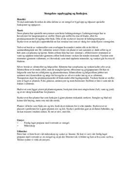 Stengelen | Oppbygging og funksjon