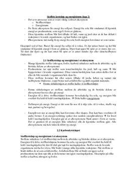 Stoffets kretsløp og energistrøm Kap. 2