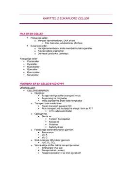 Eukaruote celler | Biologi 1 kapittel 2