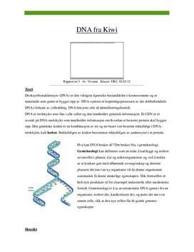 DNA fra Kiwi - Forsøk i Naturfag