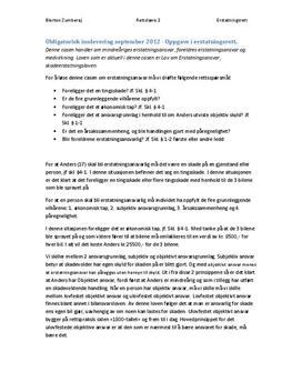 Innlevering i Erstatningsrett - Case i Rettslære 2012