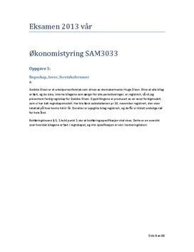 Enkeltmannsforetak med regnskap og budsjett | Eksamensoppgave 2013