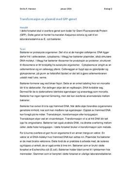 Transformasjon av plasmid med GFP