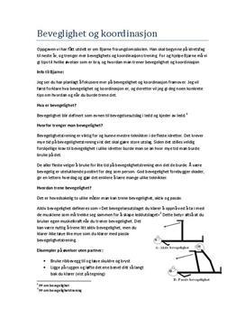 Bevegelighet og koordinasjon | Basistrening | Treningslære