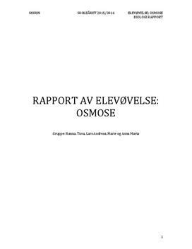 Osmose med potet | Rapport