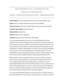 Kjønnsforskjeller i arbeidslivet | Metodeoppgave