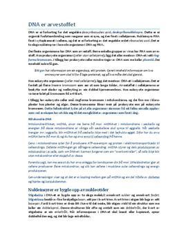 Kap. 6 DNA er arvestoffet i Bios 2 | Sammendrag