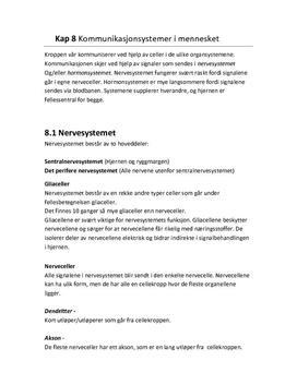 8.1 Nervesystemet | Notater