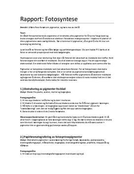 Rapport: Fotosyntese