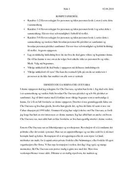 Che Guevara - historisk person - Studienett.no