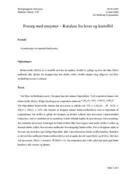 Forsøk med enzymer – Katalase fra lever og potet